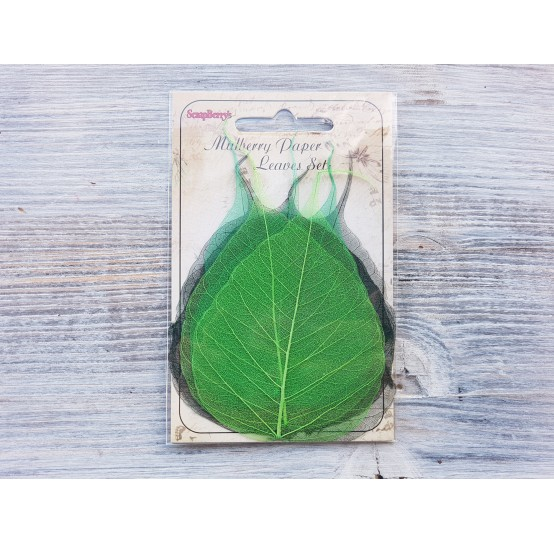 ScrapBerry's Skeleton leaves, set of 8 - 2 color mixed, banyan tree, greens