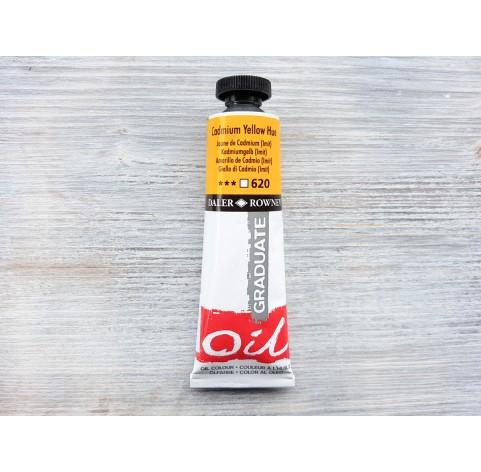 "DALER ROWNEY oil paint ""Graduate oil"", cadmium yellow hue, 38 ml, No. 620"