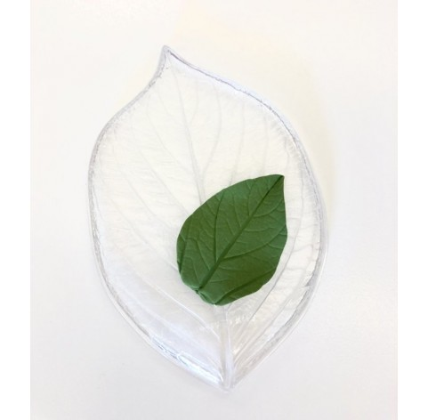 Leaf mold, hard plastic, type B, 13*8.5 cm