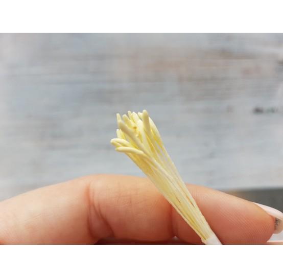 Stamens (long), light yellow, 2 mm