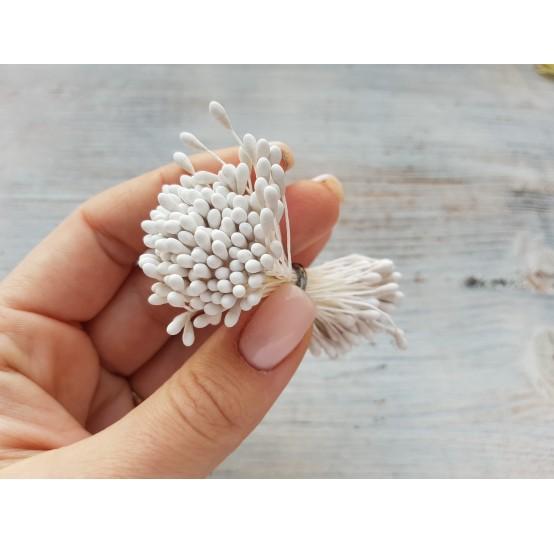 Stamens (large), white, 3 mm