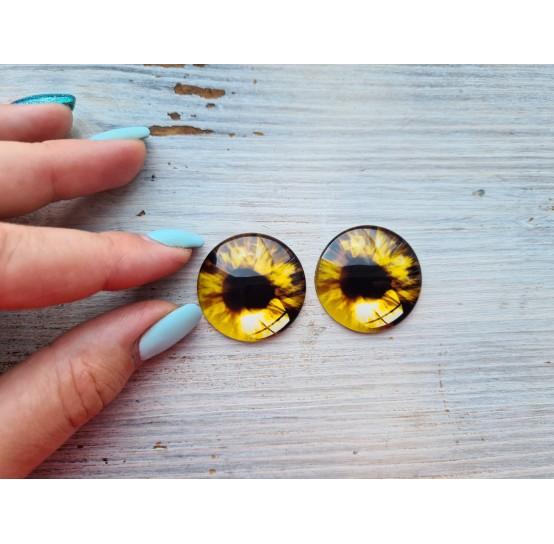 Glass eyes Brown 1, ~ Ø 3 cm